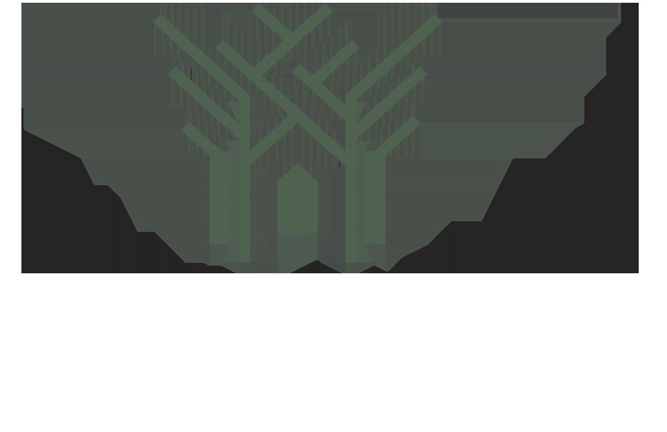 THE TEAK